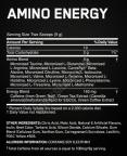 Amino Energy 10 Serv.