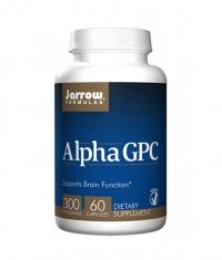 Jarrow Formulas Alpha GPC / 60 Caps.