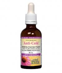 NATURAL FACTORS ECHINAMIDE ANTI-COLD ALCOHOL-FREE