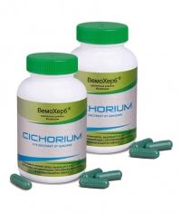 PROMO STACK Cichorium 60 Caps. / x2