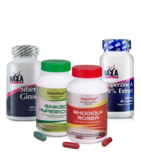 PROMO STACK Brain Boost 8
