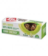FIT SPO Energy Bites / Raw Energy