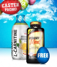 PROMO STACK Hot Easter Stack 4 1+1 FREE!