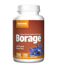 Jarrow Formulas Borage GLA-240 / 120 Soft.