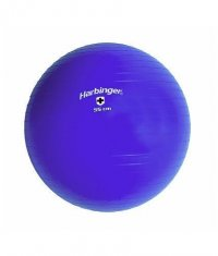 HARBINGER Swiss Training Ball / 55 cm