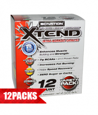 SCIVATION Xtend Intra-Workout Catalyst! /New Formula/ 12 Sticks