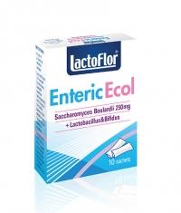 LACTOFLOR Enteric Ecol / 10 Sachets