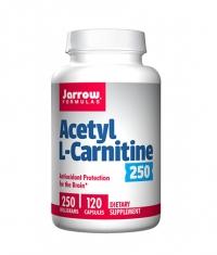 Jarrow Formulas Acetyl L-Carnitine 250mg. / 120caps.
