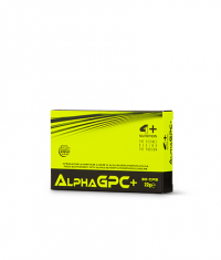 4+ NUTRITION Alpha GPC+
