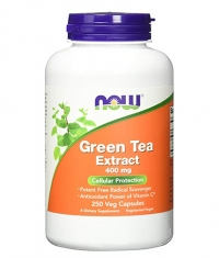 NOW Green Tea Extract 400 mg / 250Vcaps.