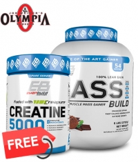 PROMO STACK MR. OLYMPIA STACK 1