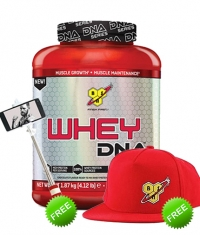 PROMO STACK BSN True Stack 26