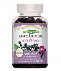 NATURES WAY Sambucus Gummies for Kids / 60 Gummies