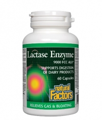 NATURAL FACTORS Lactase Enzyme / 60 Caps.