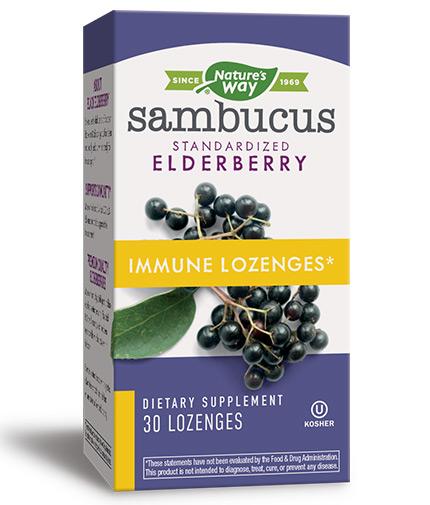 natures-way Sambucus Immune Lozenges / 30 Lozenges