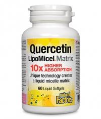 NATURAL FACTORS Quercetin LipoMicel Matrix / 60 softgels