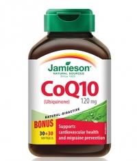 JAMIESON Coenzyme Q10 120 mg / 60 Softgels