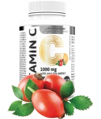 KEVIN LEVRONE Vitamin C 1000 / with Rose Hips and Bitter Orange / 90 Tabs