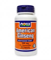 NOW American Ginseng /5% Ginsenosides/ 500mg. / 100 Caps.