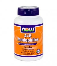 NOW Acidophilus 4X6 / 85g.