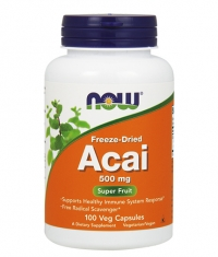 NOW Acai 500mg. / 100 VCaps.