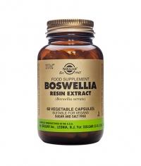 SOLGAR Boswellia Resin Extract, S.F.P. 60 Caps.