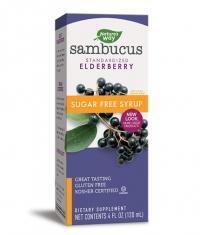 NATURES WAY Sambucus Sugar Free Syrup 120ml.
