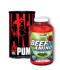 PROMO STACK Animal Pump / Amix Beef Amino