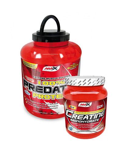 PROMO STACK Amix Predator Protein / Amix Creatine Monohydrate FREE