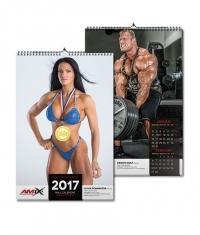 AMIX Calendar 2015