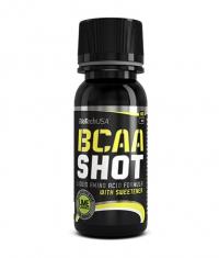 BIOTECH USA BCAA SHOT / 60ml.