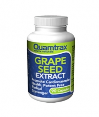 QUAMTRAX NUTRITION Grape Seed Extract / 90 caps